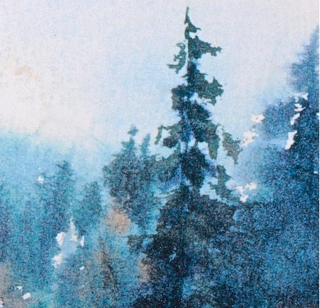 Forest Morning Haze,watercolor
