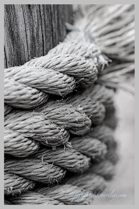 black and white photograph of frayed ropes, textures in black and white, debiriley.com