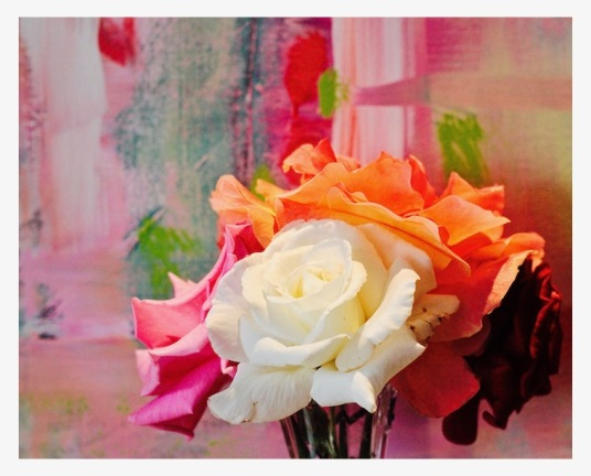 the nature of color, color theory, colorful flowers, abstracts, debiriley.com
