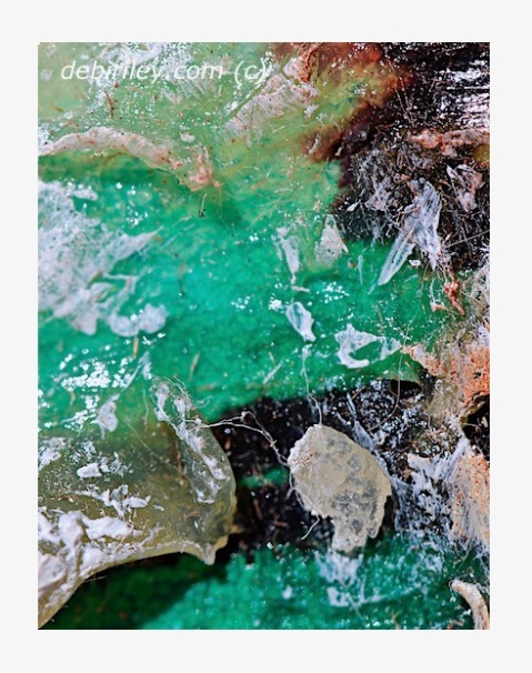creative abstract collage, pools of silence, wax encaustic art, viridian green paint, music as inspiration for art, debiriley.com