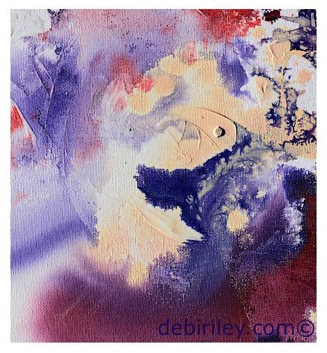 inspiration of nature flowers, purple rose photograph, debiriley.com
